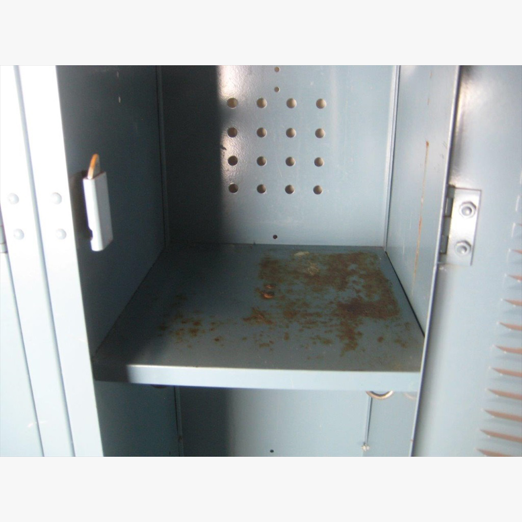 Single Tier Worley Lockers image 4 image 4